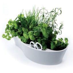 Royal VKB Herb Garden kruidenpot