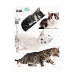 KEK Amsterdam Kittens Set 1 muursticker