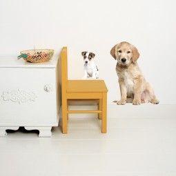 KEK Amsterdam Puppy Set 2 muursticker