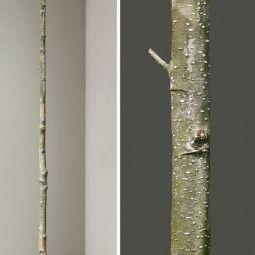KEK Amsterdam Home Tree 5 muursticker